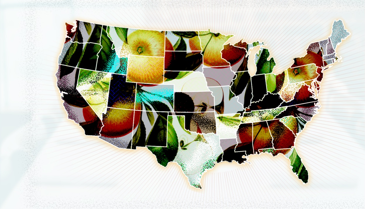 Map of the United States with a floral overlay.